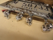 LICENSE PLATE FRAME SKULL LIGHTS