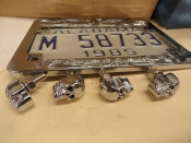 LICENSE PLATE SKULL BOLTS